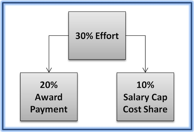 30% Effort = 20% Award Payment + 10% Salary Cap Cost Share