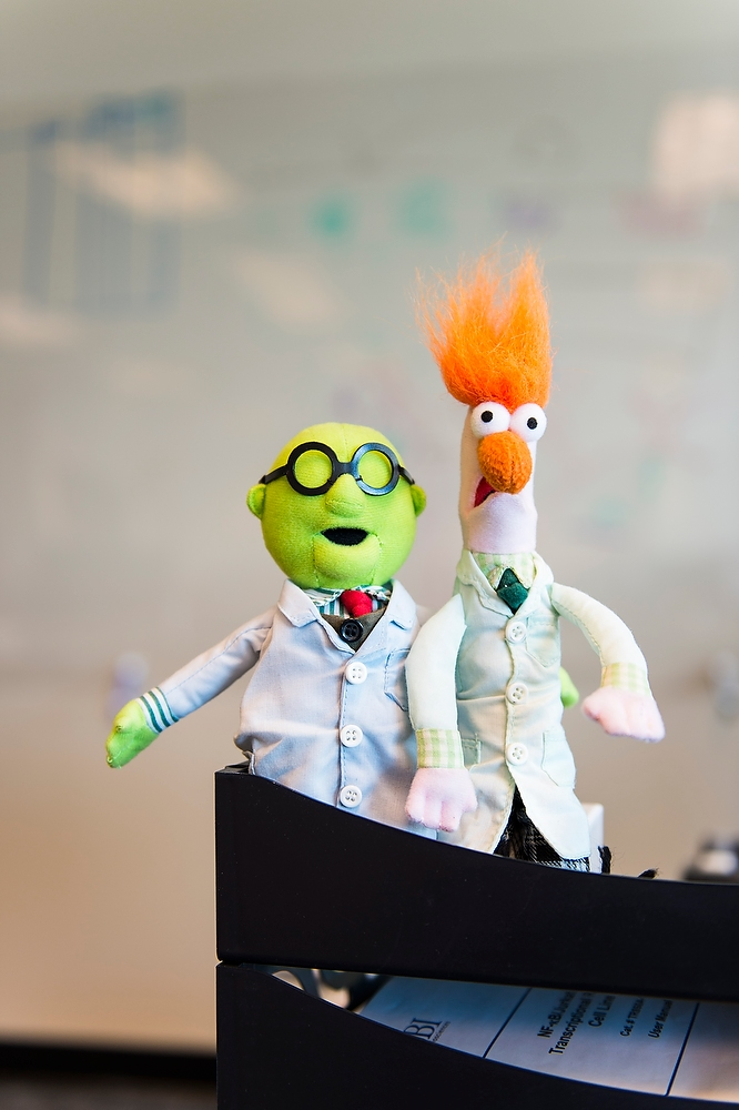 Muppets in lab coats